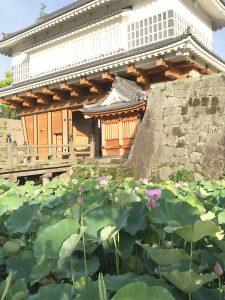 御楼門と蓮の花